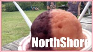 ノースショアの超自然派ランチが食べたい!