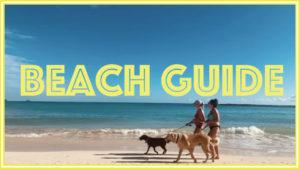 ハワイに行ったら一度は行きたいビーチの一つ。