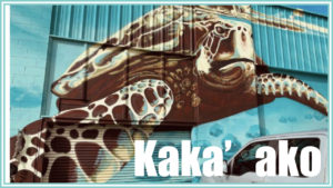 アートの街、カカアコの壁画ベスト10